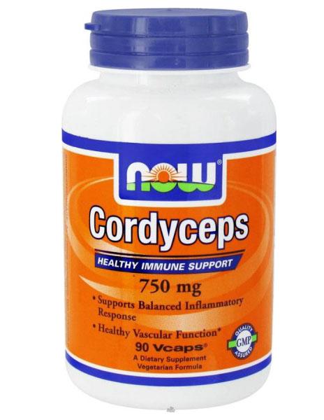 NOW-cordyceps