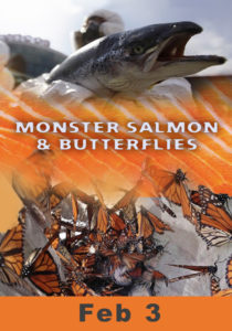 monster-salmon_poster-2017