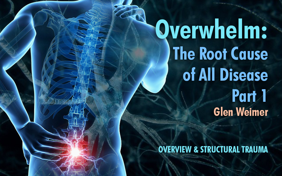 Overwhelm - Part 1 - Nantucket Holistic Bodywork - Overview and